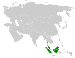 Ixos malaccensis distribution map.png