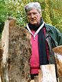 János Nádasdy sorgt sich; seine Arbeit REGENWALD thematisiert die ungebremste Abholzung von Bäumen; Wintergärten V, Güntherstraße Hannover nahe der Eilenriede.jpg