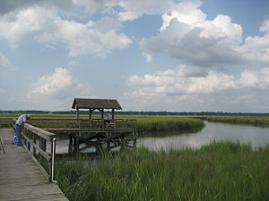 James Island, South Carolina - The marshes of James Island, SC