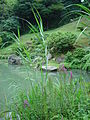 Japan Tottori KannonIn DSC01981.jpg