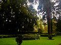 Jardín Anexo.jpg