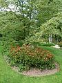 Jardin de Berchigranges (14).JPG