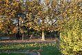Jardin des Plantes @ Paris (22754360008).jpg