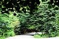 Javarom Park.jpg