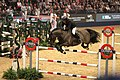 John Whitaker and Argento jumping at Olympia 2017.jpg