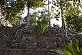 Jungle covered ruin Coba 4 (4373751575).jpg