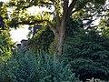 Köln Am Botanischen Garten 19 (2).jpg