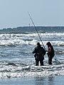 KIC4729 Surf Perch Fishing Kalaloch Beach Olympic NP Washington (22681050088).jpg