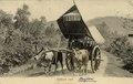 KITLV - 1401606 - Lambert & Co., G.R. - Singapore - Bullock cart - circa 1900.tif