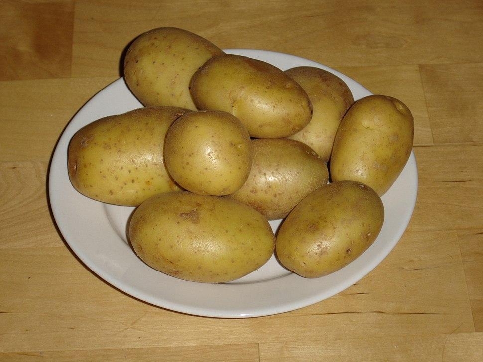 Kartoffeln der Sorte Marabel