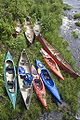 Kayaks and canoes from above.jpg