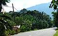 Kg Pantai Besar - Pah Cafe @ WiFi - panoramio.jpg