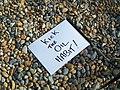 Kick the oil habit (WNBR Brighton 2010) (4707085409).jpg