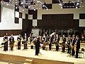 Kitarski orkester ljudmila rusa.JPG