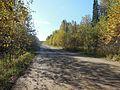 Kungursky District, Perm Krai, Russia - panoramio (154).jpg