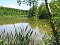 L'étang du Levatel au printemps.JPG