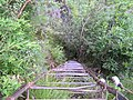 Ladder down to Middle Tiger Leaping Gorge - panoramio.jpg