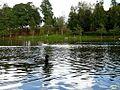 Lago Castiñeiras04 (5079680940).jpg