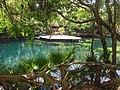 Laguna en Quintana Roo, México.jpg