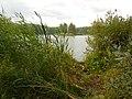 Lake Silach - panoramio (3).jpg