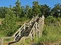 Lakeshore Stairs - panoramio.jpg