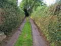 Lane heading to Bowden - geograph.org.uk - 1581599.jpg
