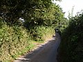 Lane past Hill Farm - geograph.org.uk - 554911.jpg