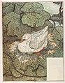Le-vilain-petit-canard-4-525b23fc.jpg