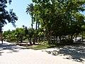 Le jardin du malecon - panoramio (2).jpg