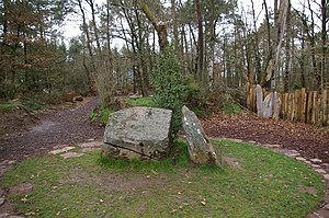 Brocéliande - Merlin's alleged tomb in Paimpont forest.