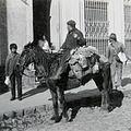 Lechero argentina 1875.jpg
