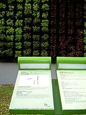 Hortpark Wikipedia