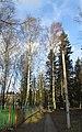 Lobnya, Moscow Oblast, Russia - panoramio (442).jpg