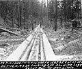 Log chute, Washington, ca 1898 (INDOCC 415).jpg