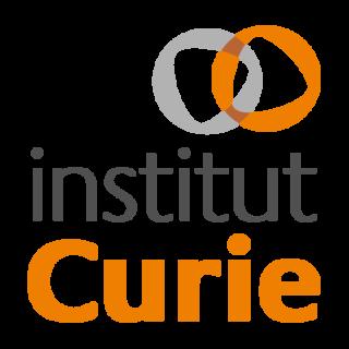 Curie Institute (Paris)