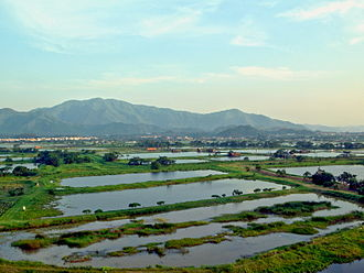 Lok Ma Chau - Most of the area in Lok Ma Chau is wetland