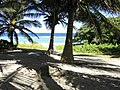 Long Beach - Tinian - panoramio (7).jpg