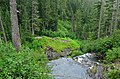 Looking over the lip of Narada Falls to the lower observation point, Mount Rainier National Park 01.jpg