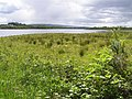 Lough Erne at Curraghmore - geograph.org.uk - 449936.jpg