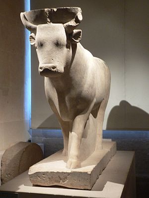 A statue of the sacred bull, Apis, found at the Serapeum of Saqqara. Louvres-antiquites-egyptiennes-p1020068.jpg