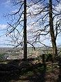 Lower Greenway farm Chimney - geograph.org.uk - 369196.jpg