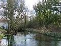 Lyde River - geograph.org.uk - 146721.jpg