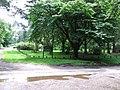 Lynford Arboretum - geograph.org.uk - 508880.jpg