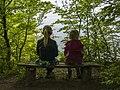 Møns Klint - panoramio (4).jpg