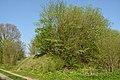 Mühlenbarbek, Reste der Bahnstrecke Wrist–Itzehoe NIK 5056.JPG