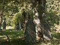 MORTEHAN 84009 CLT 0023 01 cimetière croix frêne.JPG
