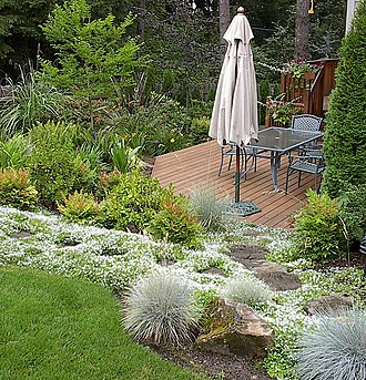 Landscape maintenance - One example of a maintained landscape from Beaverton, Oregon