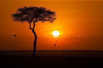 Maasai Mara - Image: Maasai Mara National Reserve Kenya