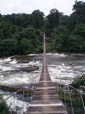 Korup National Park - Mana suspension bridge – Official entrance