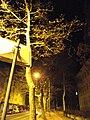 Maribor - At Night (8641573898).jpg
